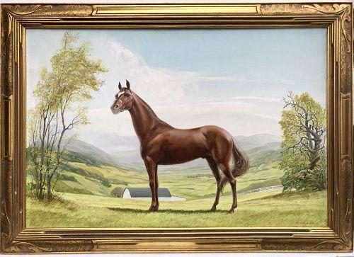 Horse Portrait Landscape by Harold Macintosh