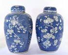 19C Chinese Blue & White Porcelain Ginger Covered Jar Vase Plum Flower