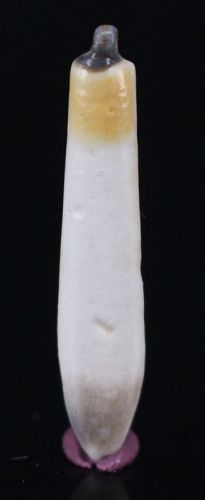 Egyptian Faience White and Yellow Lotus Petal Amulet 3,2 cm