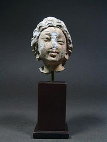 Gandhara Stucco Head of a Bodhissatva, 3rd/4th Cent. AD
