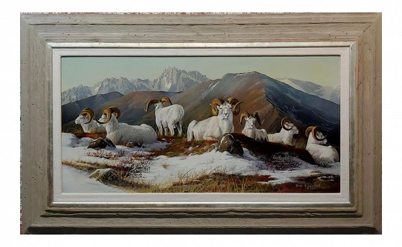 1970s Figurative Oil Painting, Big Horn Mountain Sheep Resting by Gary Swanson