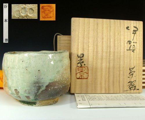 Tanimoto Kei Iga Chawan Japanese Tea Bowl, Feel the Joy!
