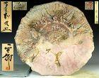 Amazing Shino Manyosai Platter by Hayashi Shotaro