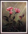 Fine Flemish Realism L/ E Print by David E. Weaver, Morning Splendor