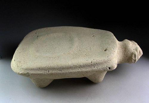 Important massive Volcanic stone turtle Metate, Taino. 1st. mill. AD