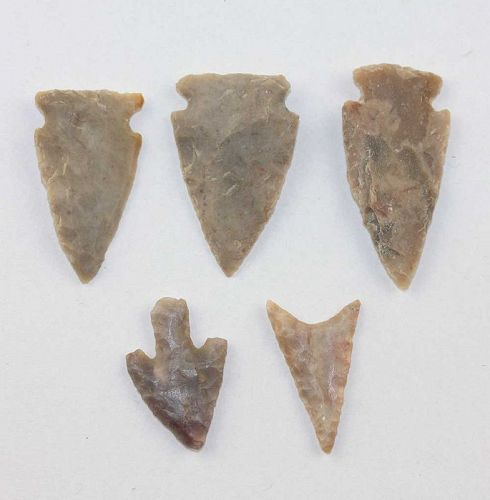 5 Authentic US native Indian Neolithic Silex stone Arrow points!
