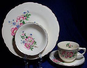 Scio Pink Floral Dinnerware