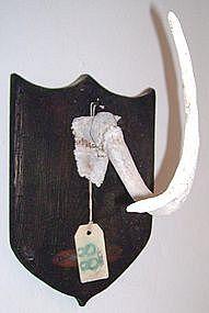 """Alan Kessler """"Antler Trophy"""" Oil on Wood"""