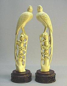 LATE 19TH CENTURY IVORY CARVINGS: A PAIR OF BIRDS