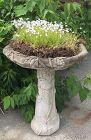 Vintage concrete bird bath with trailing vine motif