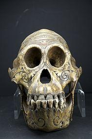 Important & Rare Orang-Outang Adorned Skull, Dayak Peoples
