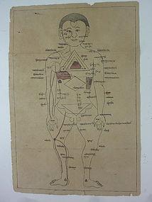 MONGOLIAN 2 MEDICAL FIGURE DRAWINGS