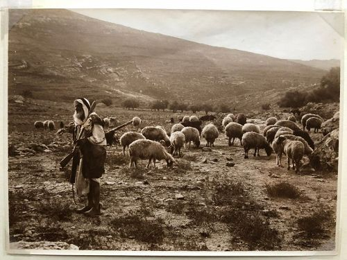 Photo of a Bedouin shepherd American Colony c.1920