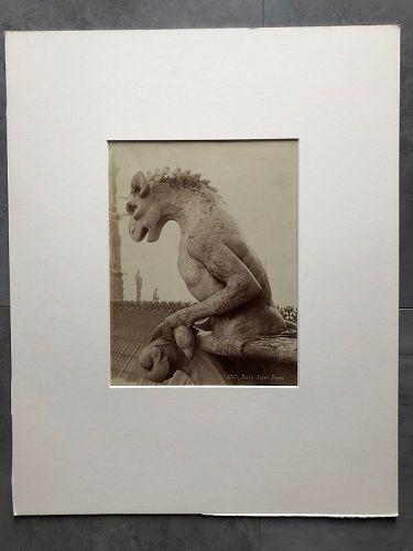 Albumen photo of a gargoyle Notre Dame Paris c.1880