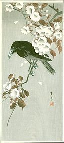 Hotei Japanese Woodblock Print - Crow on Blossoming Cherry