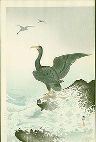 Ohara Koson Japanese Woodblock Print - Cormorants at Coast RARE SOLD
