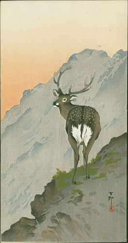 Ohara Koson Japanese Woodblock Print - Deer in mountains SOLD