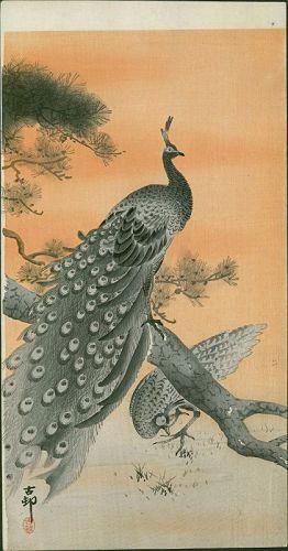 Ohara Koson Japanese Woodblock Print - Peacock and Peahen - RARE