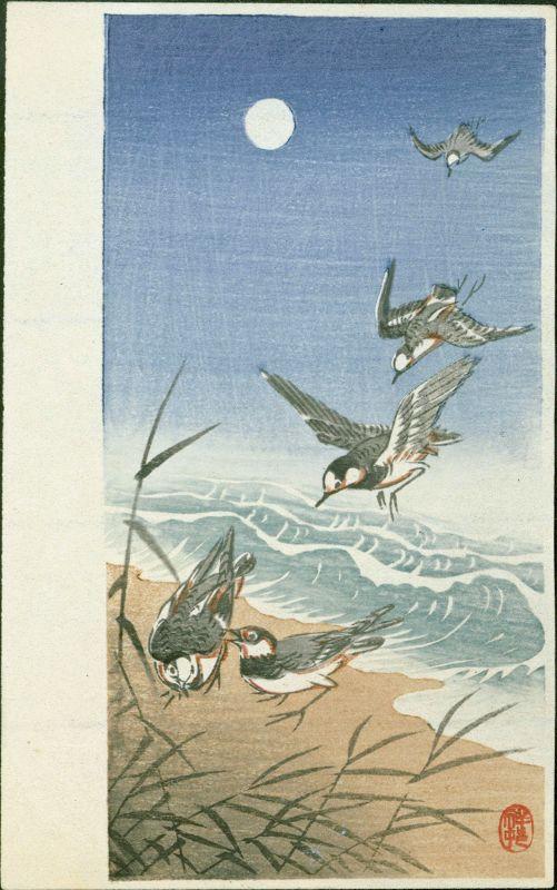 Ohara Koson (Shoson) Japanese Woodblock Print - Plovers and Moon