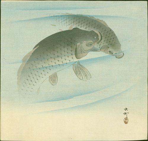Ohara Koson Japanese Woodblock Print - Two Carp