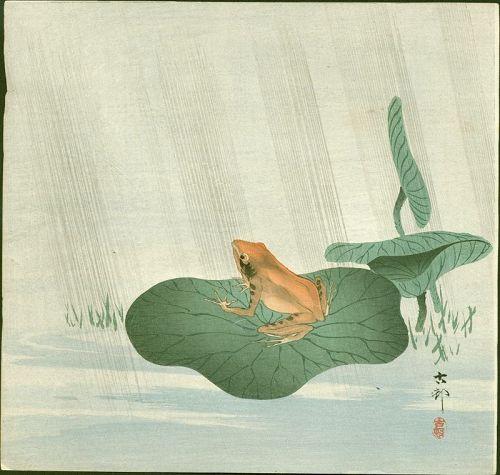 Ohara Koson Japanese Woodblock Print - Frog on Lotus Leaf SOLD