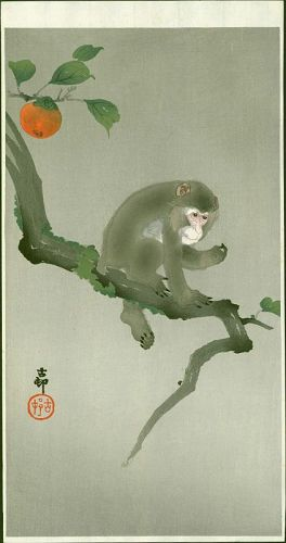 Ohara Koson Woodblock Print - Monkey in a Persimmon Tree SOLD