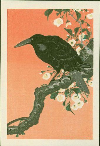 Ohara Koson Japanese Woodblock Print - Crow and Cherry