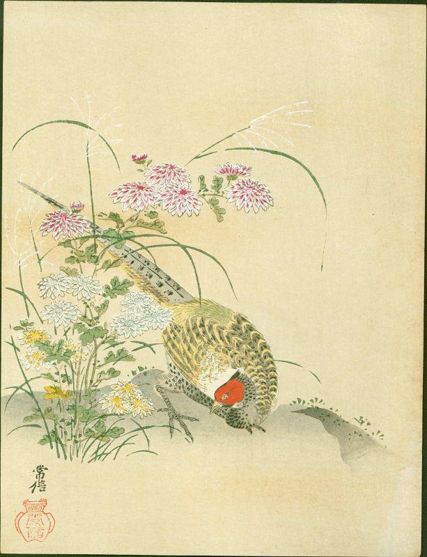 Kano Tsunenobu Japanese Woodblock Print - Pheasant and Wildflowers