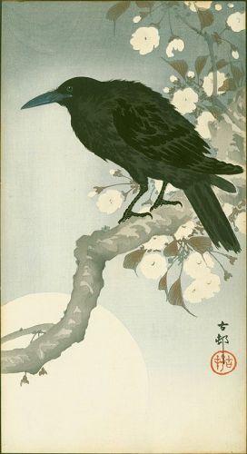 Ohara Koson Woodblock Print - Crow on Cherry Branch - RARE SOLD