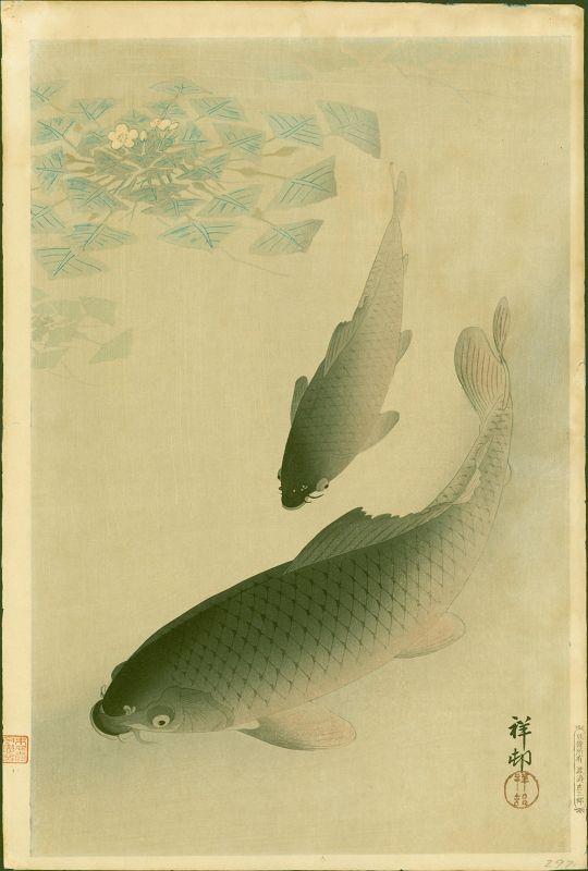 Ohara Shoson (Koson) Japanese Woodblock Print - Two Carp - Pre-War