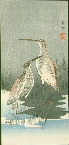 Ohara Koson Japanese Woodblock Print - Two Snipes Near Waterfront