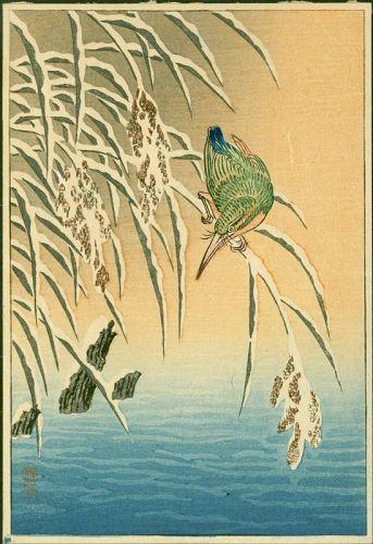 Ohara Koson Woodblock Print - Kingfisher on Snowy Reeds -Rare SOLD