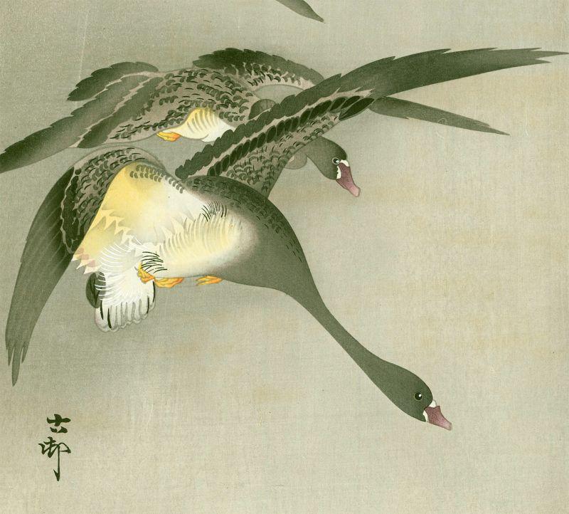 Ohara Koson Japanese Woodblock Print - Geese in Flight and Full Moon