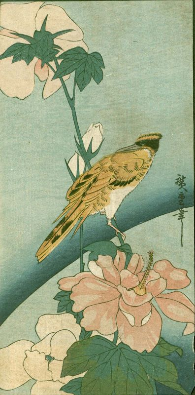 Hiroshige Ando Japanese Woodblock Print - Rose Mallow and Bird