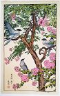 Toshi Yoshida Woodblock Print - Birds in Summer - Sarusuberi SOLD