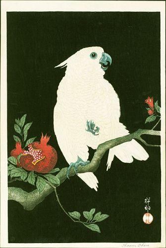 Ohara Shoson (Koson) Woodblock Print - Cockatoo & Pomegranate