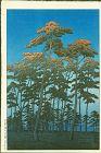 Hasui Kawase Japanese Woodblock Print - Hikawa Park, Omiya