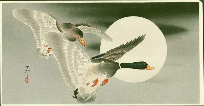 Ohara Koson Japanese Woodblock Print - Mallards in Flight and Moon