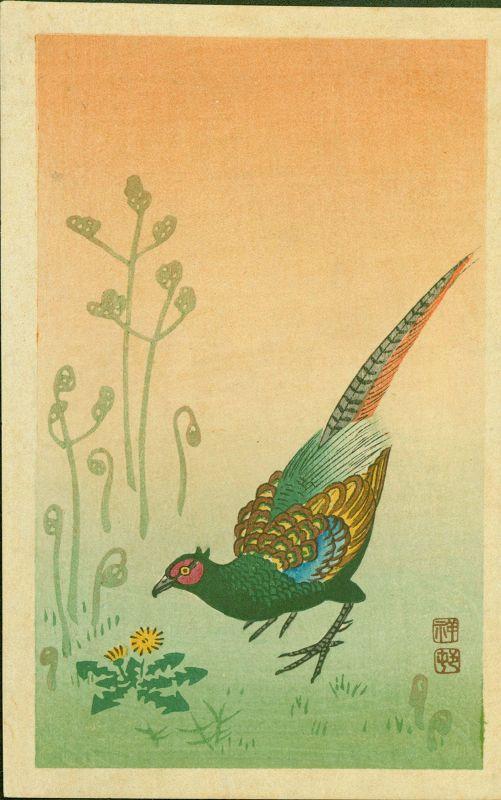 Ohara Koson (Shoson) Woodblock Print - Pheasant and Grasses SOLD