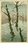 Kikuchi Yuichi (Tomokazu) Japanese Woodblock Print - Taisho Pond RARE