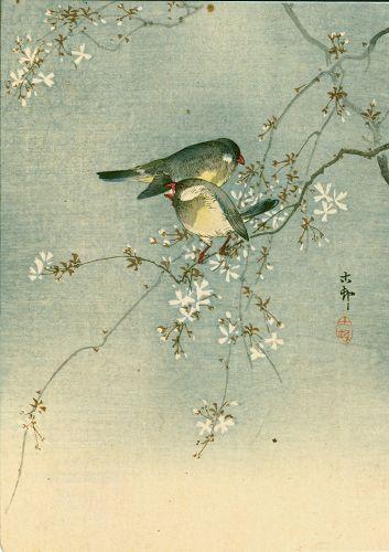 Ohara Koson Japanese Woodblock Print -Two Birds on a Cherry Tree SOLD
