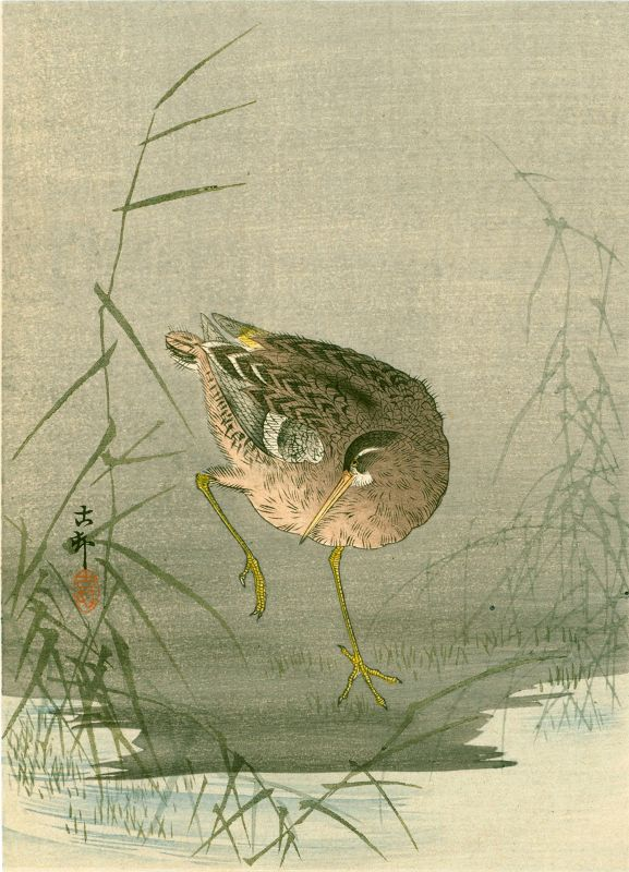 Ohara Koson Japanese Woodblock Print - Snipe at Waterside 1910 SOLD