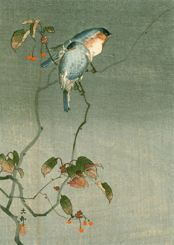 Ohara Koson Woodblock Print -Two Birds (Wrens) on a Tree 1910 SOLD
