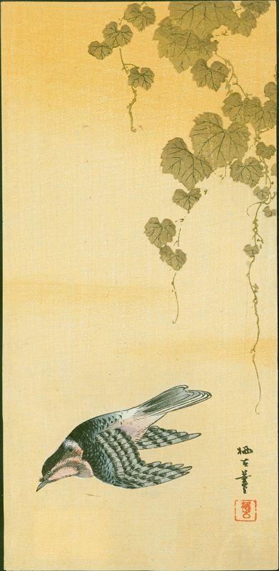 Aoki Seiko Japanese Woodblock Print - Flying Cuckoo - 1910 Rare