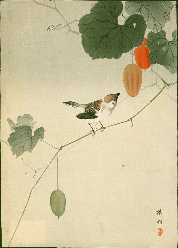 Ohara Koson Woodblock Print - Sparow on Vine of Wild Melon - 1910 Rare