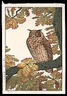Signed Toshi Yoshida Woodblock - Eagle Owl