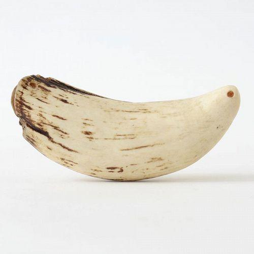"An Oceanic Polynesian Whale Tooth Pendant ""Tabua"", ex. Coll."