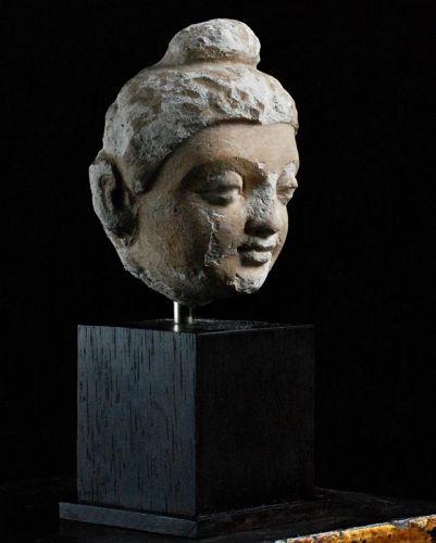 Gandhara Stucco Head Fragment of a Buddha 3rd/4th c.