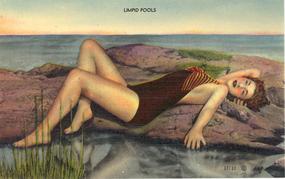 """""""Limpid Pools"""" Vintage Linen Postcard"""
