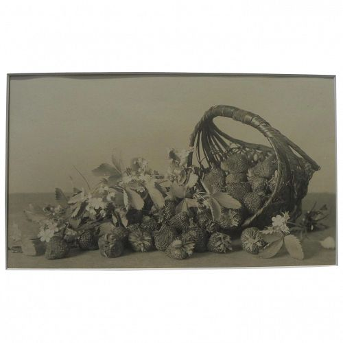 Circa 1900 original still life photograph of strawberries and basket from collection of Charlton Heston and wife Lydia